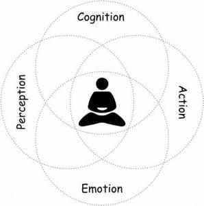 meilleure-top-psychotherapie-brainspotting-NTCV-EMDR-formation-psychotherapie